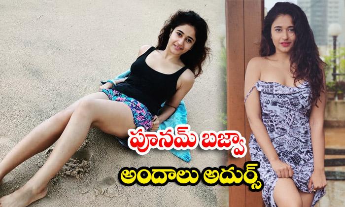 Stunning beauty poonam bajwa latest HD images-పూనమ్ బజ్వా అందాలు అదుర్స్