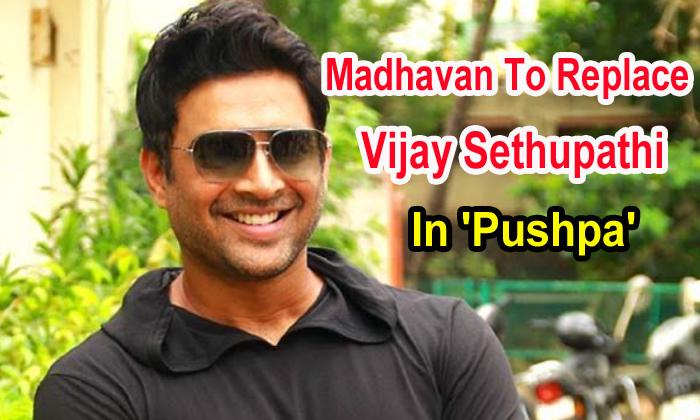 TeluguStop.com - Madhavan To Replace Vijay Sethupathi In 'pushpa'