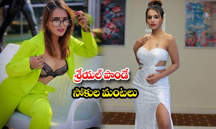 Super model Shreyal Pandey hot images-శ్రేయల్ పాండే సోకుల మంటలు