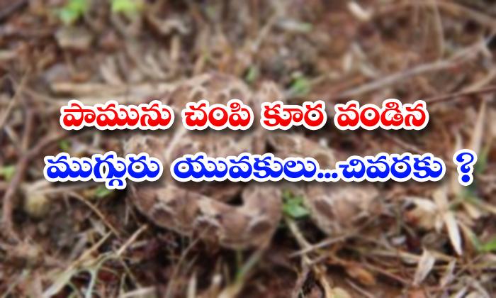 TeluguStop.com - Three People Killed Snake In Tamilnadu