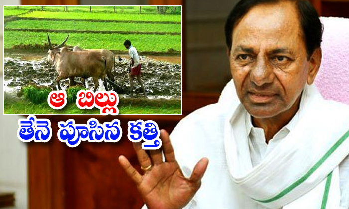 TeluguStop.com - Cm Kcr Opposes New Agricultural Bill