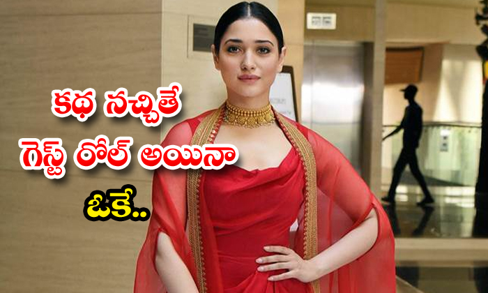 TeluguStop.com - Tamannaah Interested On Special Roles