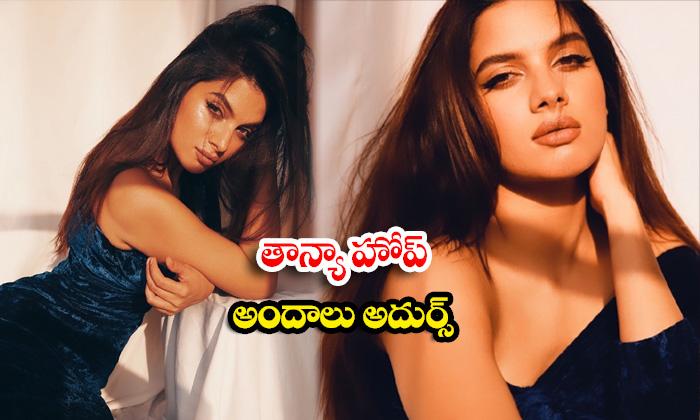 Tollywood beauty Tanya Hope Glamorous pics-తాన్యా హోప్ అందాలు అదుర్స్