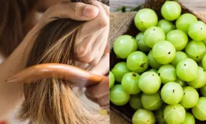 Telugu Amala, Amazing Health Benefits Of Amla, Amla For Hair, Dandruff, Hair, Hair And Dandruff, Heart, Mind Power, Stomach, Usiri-Telugu Health