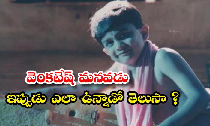 TeluguStop.com - Child Artist Anand Vardhan Photo Viral