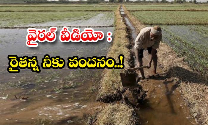 TeluguStop.com - Viral Video Salute To Handicapped Farmer