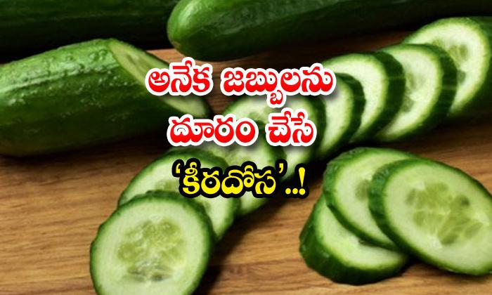 TeluguStop.com - Health Benefits Of Cucumber