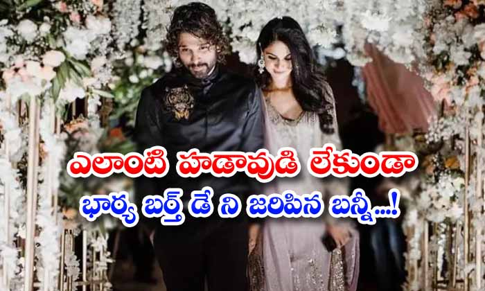 TeluguStop.com - Bunny Celebrating His Wifes Birthday Without Any Rush