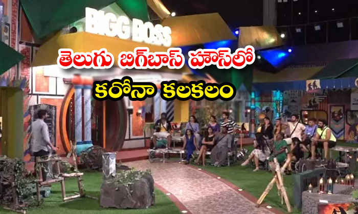 TeluguStop.com - Corona Test To Gangavva In Bigg Boss House