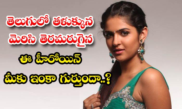 TeluguStop.com - Telugu Yesteryear Heroine Deeksha Seth Career In Film Industry News