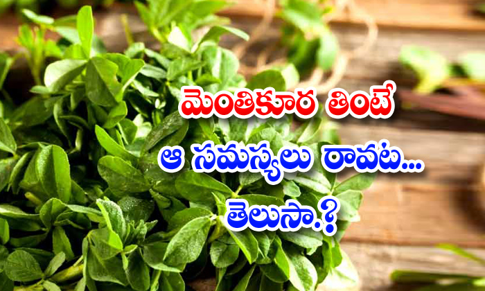 TeluguStop.com - Health Benefits Of Fenugreek Leaves
