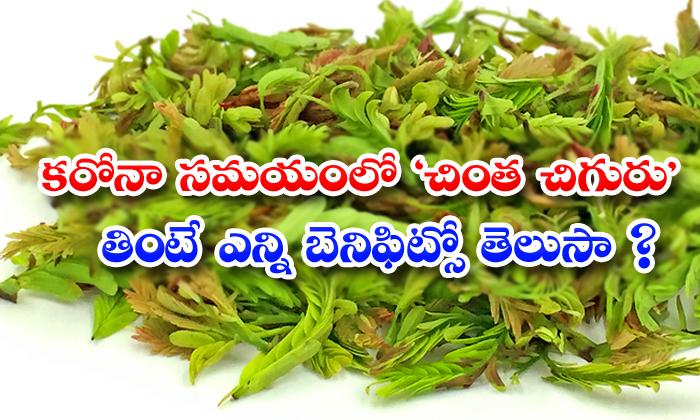 TeluguStop.com - Health Benefits Of Tamarind Leaves In Corona Time