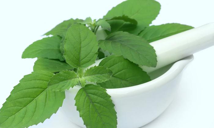 Telugu Health Tips, Home Remedies, Latest News, Mouth, Mouth Ulcer-Telugu Health - తెలుగు హెల్త్ టిప్స్ ,చిట్కాలు