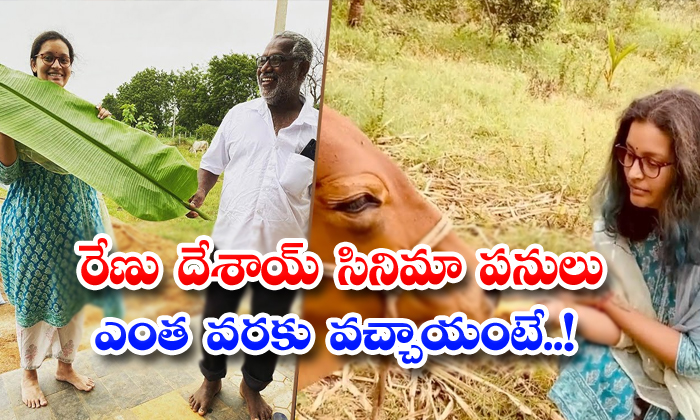 TeluguStop.com - Latest Update About Renudesai Making Movie