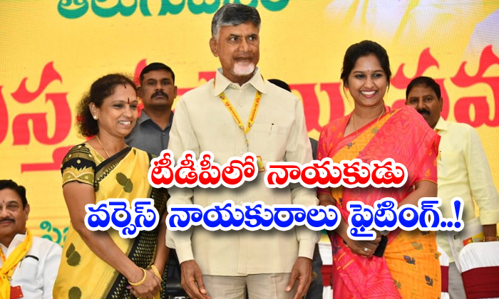 TeluguStop.com - Fighting Between Tdp Women Leaer Vs Gent Leader