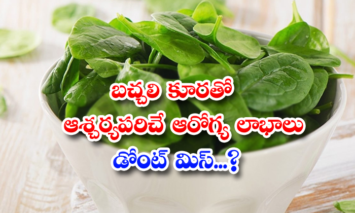 TeluguStop.com - Wonderful Health Benefits Of Spinach