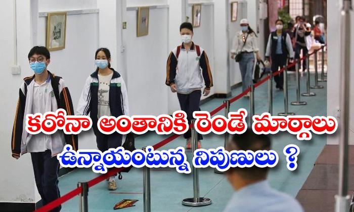 TeluguStop.com - Two Posibilities For Coronavirus Ending