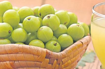 TeluguStop.com - ఉసిరి చేసే మేలు తెలిస్తే.. వదిలిపెట్టరు..-Latest News - Telugu-Telugu Tollywood Photo Image