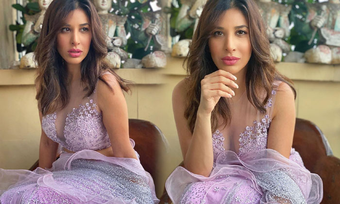 Viral Pictures Of Social Media Glamorous Hot Beauty Sophie Choudry-telugu Actress Hot Photos Viral Pictures Of Social Me High Resolution Photo