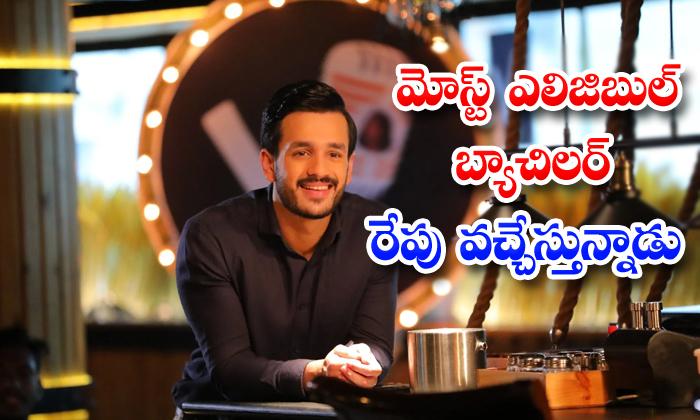 TeluguStop.com - Akhil Pooja Hegde Bommarillu Baskar Most Eligible Bachelor