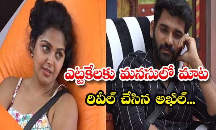 TeluguStop.com - Akhil About His Love In Bigg Boss House