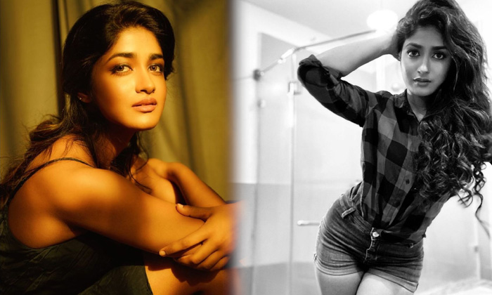 Alluring Photos Of Dimple Hayathi Prove That She Is A True Kollywood Actress At Saree-telugu Actress Hot Photos Alluring High Resolution Photo