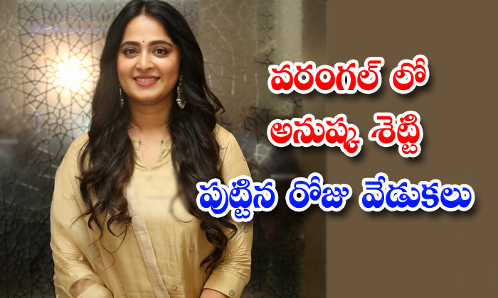 TeluguStop.com - Anushka Shettys Birthday Celebrations Planned In Warangal