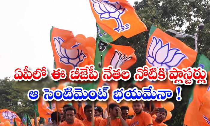 TeluguStop.com - Ap Bjp Leaders Mouths Are Shutdown