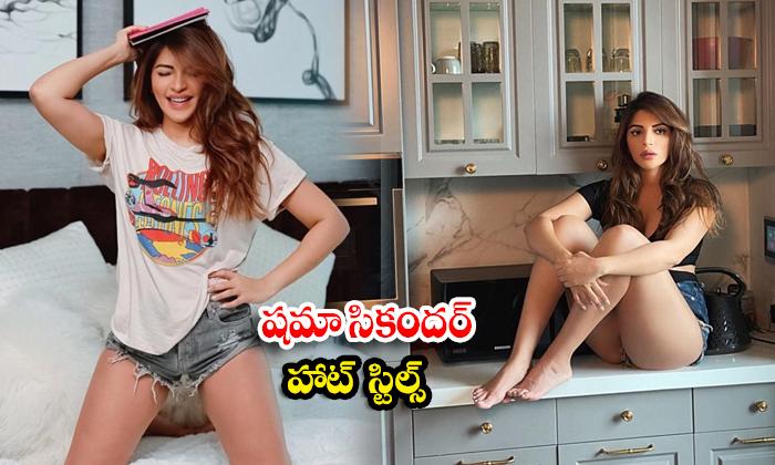 Beauty Shama Sikander awesome poses-షమా సికందర్ హాట్ స్టిల్స్