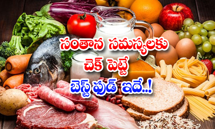 TeluguStop.com - Best Food For Reducing Fertility Problems