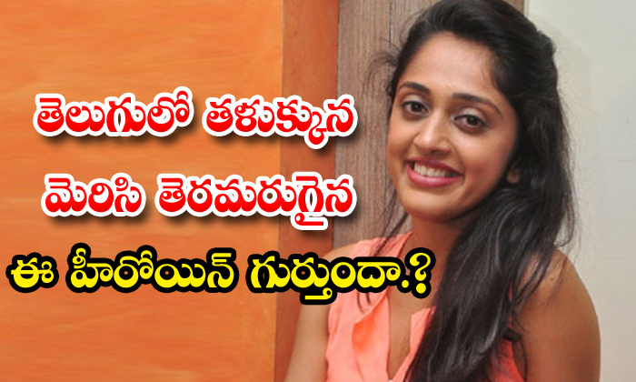 TeluguStop.com - Betting Bangarraju Movie Fame Heroine Nidhi Movie Career News