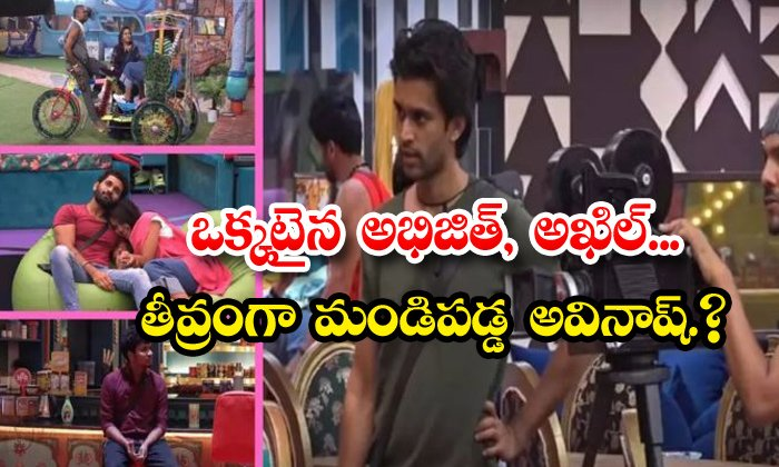 TeluguStop.com - Akhil Supports Abhijeet In Bigg Boss 4