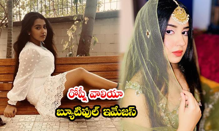 Bollywood Hot beauty roshni walia revising images-రోష్నీ వాలియాబ్యూటిఫుల్ ఇమేజస్