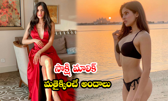 TeluguStop.com - Bollywood Actress Sakshi Malik Awesome Poses