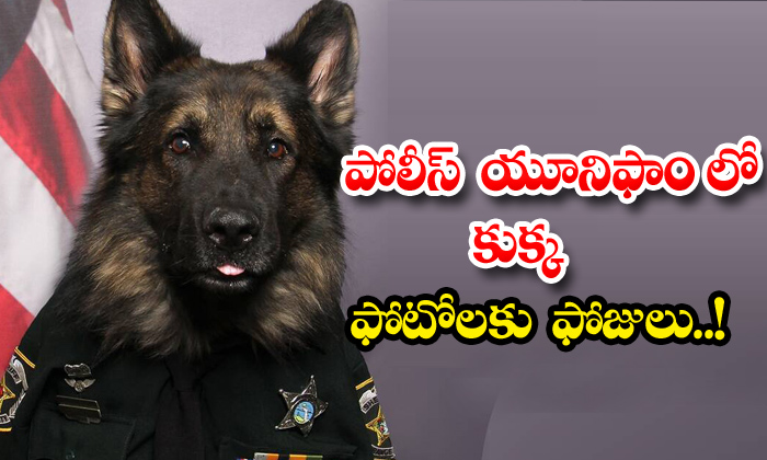 TeluguStop.com - Chico Dog Police Uniform Photos Viral
