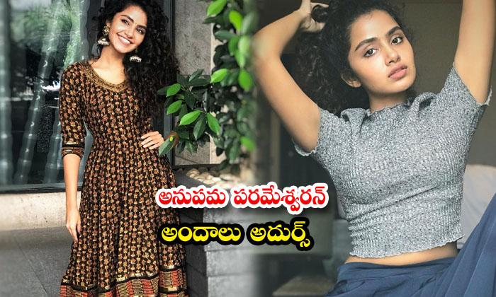 Glamorous actress anupama parameswaran cute candid clicks-అనుపమ పరమేశ్వరన్ అందాలు అదుర్స్
