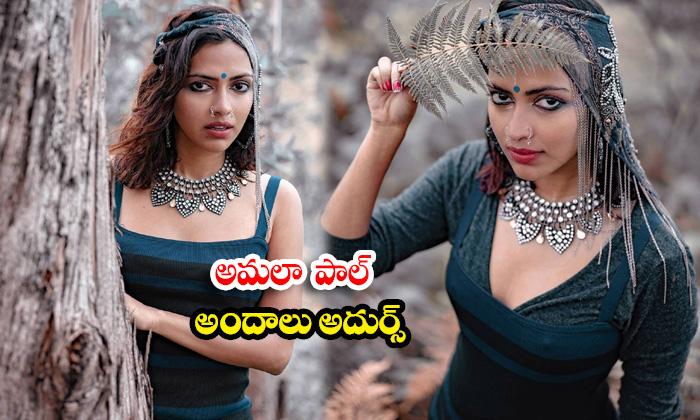 Gorgeous Actress Amala Paul amazing images-అమలా పాల్ అందాలు అదుర్స్