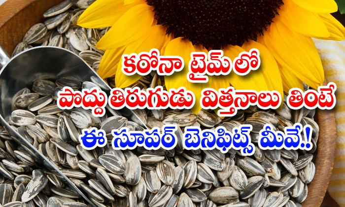 TeluguStop.com - Health Benefits Of Sunflower Seeds