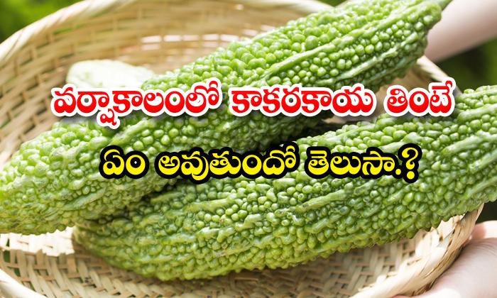 TeluguStop.com - Health Benefits Of Bitter Gourd In Rainy Season