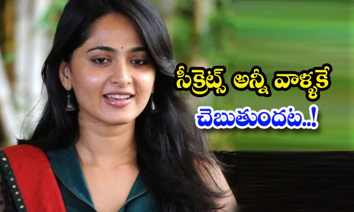 TeluguStop.com - Anushka Shetty Real Life Secrets Friends Family
