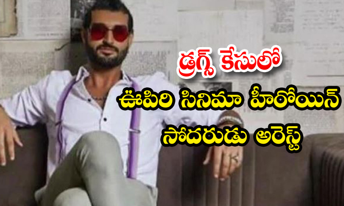 TeluguStop.com - Ncb Arrests Gabriella Demetriades Brother