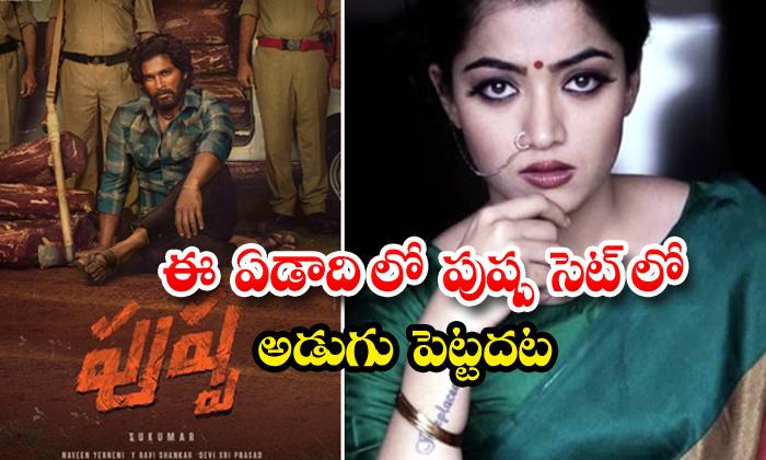 TeluguStop.com - Rashmika Mandanna Not Joining Pushpa Shooting In This Year