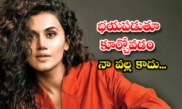 TeluguStop.com - Taapsee Continuous Plan To Shoot Four Movies