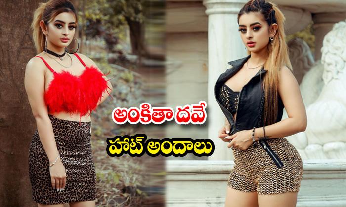 Hot actress ankita dave spicy clicks-అంకితా దవే హాట్ అందాలు