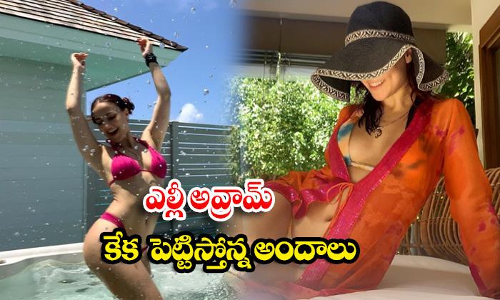 Hot model and Actress elli avrram Glamorous Images-ఎల్లీ అవ్రామ్ కేక పెట్టిస్తోన్నఅందాలు