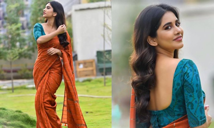TeluguStop.com - Pic Talk: Nabha Natesh Looks Attractive In Saree-Latest News English-Telugu Tollywood Photo Image