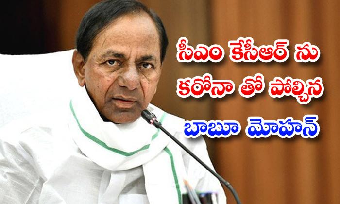 TeluguStop.com - Bjp Leaderactor Babu Mohan Comments On Cm Kcr In Dubbaka Bye Elections