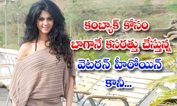 TeluguStop.com - Tollywood Veteran Heroine Kamna Jethmalani Is Again Retry As Heroine