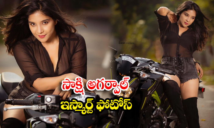 Kollywood stunning beauty Sakshi Agarwal stunning pictures-సాక్షి అగర్వాల్ ఇస్మార్ట్ ఫొటోస్
