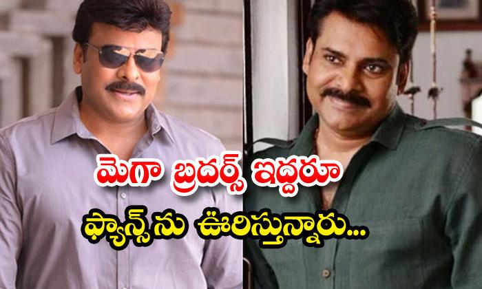 TeluguStop.com - Chiranjeevi And Pawan Kalyan Back To Back Movies